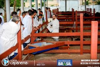 workshop universidade brasil (60 of 92)