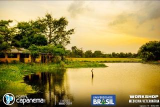 workshop universidade brasil (64 of 92)