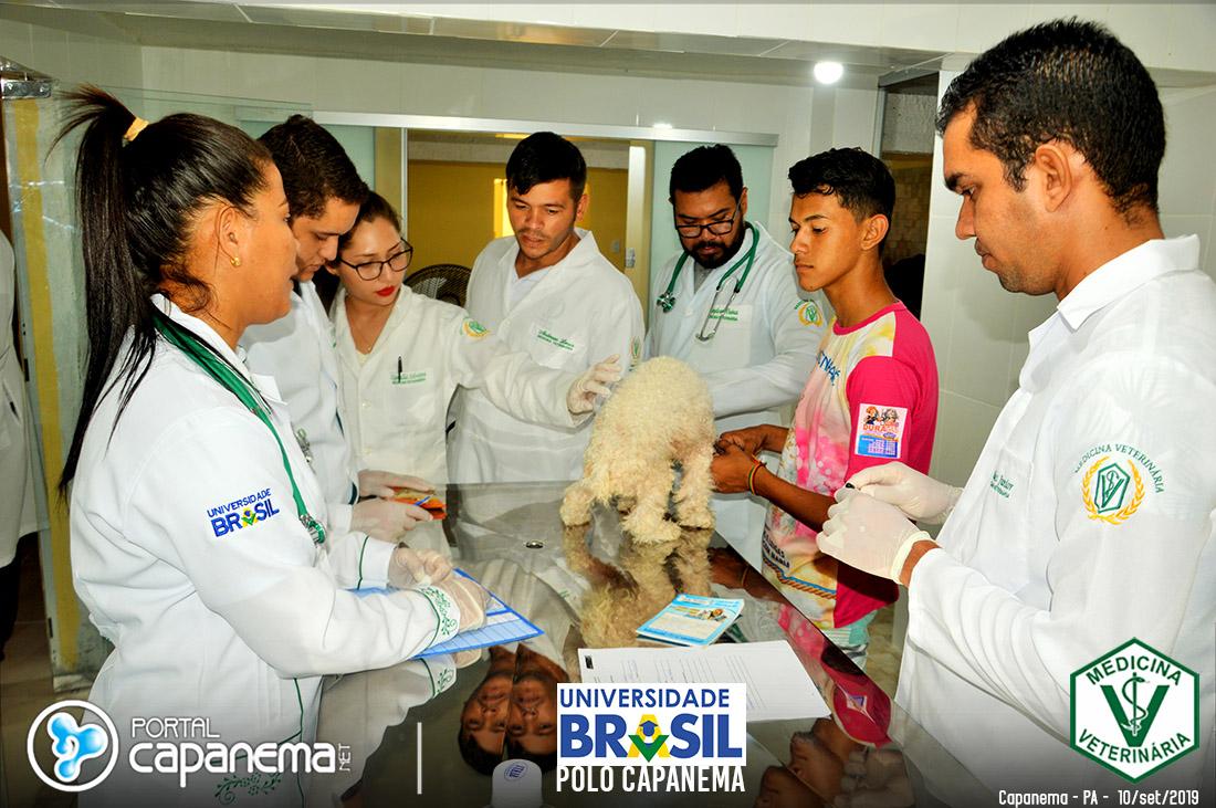 medicina vterinaria da universidade brasil em capanema
